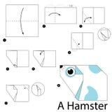 Βαθμιαία οδηγίες πώς να κάνει το origami μια χάμστερ Στοκ Φωτογραφία