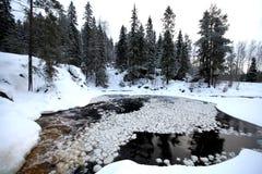 βαθύς δασικός χειμώνας βραδιού Στοκ Φωτογραφία