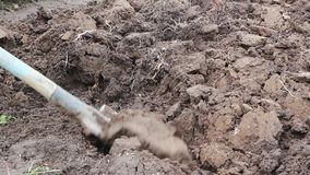 Βαθύ εδαφολογικό σκάψιμο Να προετοιμαστεί για την καλλιέργεια των λαχανικών φιλμ μικρού μήκους