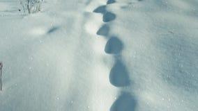 βαθύ χιόνι βημάτων απόθεμα βίντεο