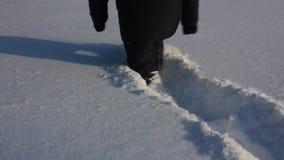 βαθύ χιόνι απόθεμα βίντεο