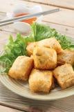 Βαθύ Tofu μυγών Στοκ εικόνες με δικαίωμα ελεύθερης χρήσης