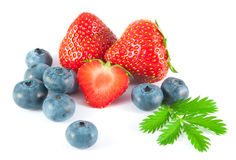 Βακκίνια και φράουλες με τα φύλλα Στοκ εικόνες με δικαίωμα ελεύθερης χρήσης