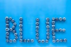 Βακκίνια στο ζωηρόχρωμο μπλε υπόβαθρο με τις επιστολές που συλλαβίζουν το BL Στοκ εικόνες με δικαίωμα ελεύθερης χρήσης