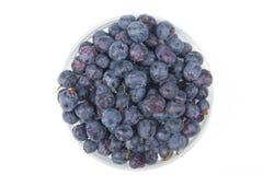 Βακκίνιο στο ξύλινο επιτραπέζιο υπόβαθρο, κύπελλο των βακκινίων Αντιοξειδωτικοοι, detox διατροφή, οργανικά φρούτα r _ στοκ φωτογραφίες με δικαίωμα ελεύθερης χρήσης