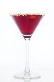Βακκίνιο Martini Στοκ εικόνα με δικαίωμα ελεύθερης χρήσης