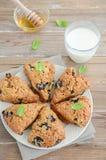 Βακκίνιο scones με whole-wheat το αλεύρι Στοκ Εικόνες