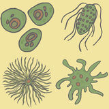 βακτηρίδια που τίθενται Διανυσματικό βακτηρίδιο ΙΟΣ Στοκ φωτογραφία με δικαίωμα ελεύθερης χρήσης
