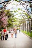 Βαλένθια, Ισπανία - 17 Απριλίου 2016: Άνθρωποι που περπατούν στους κήπους Turia Στοκ εικόνα με δικαίωμα ελεύθερης χρήσης