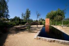 βαλανιδιά κήπων φελλού Στοκ φωτογραφία με δικαίωμα ελεύθερης χρήσης