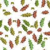 Βαλανιδιά accorn και άνευ ραφής υπόβαθρο φθινοπώρου σχεδίων φύλλων φθινοπώρου διανυσματική απεικόνιση
