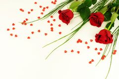 βαλεντίνος ημέρας s Πλαίσιο όμορφα κόκκινα τριαντάφυλλα στοκ φωτογραφίες με δικαίωμα ελεύθερης χρήσης