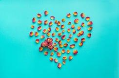 βαλεντίνος καρτών s Σύμβολο καρδιών φιαγμένο από ξηρά τριαντάφυλλα σε ένα μπλε υπόβαθρο Η τοπ άποψη, επίπεδη βάζει διάστημα αντιγ Στοκ Εικόνα