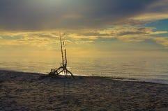 βαλτική Εσθονία κοντά στη θάλασσα somethere Ταλίν Πολωνία Στοκ εικόνα με δικαίωμα ελεύθερης χρήσης
