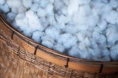 Βαμβάκι στο καλάθι Στοκ φωτογραφίες με δικαίωμα ελεύθερης χρήσης