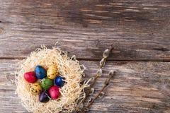 Βαμμένα αυγά ορτυκιών σε μια φωλιά στο ξύλινο υπόβαθρο Στοκ φωτογραφία με δικαίωμα ελεύθερης χρήσης