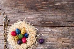 Βαμμένα αυγά ορτυκιών σε μια φωλιά στο ξύλινο υπόβαθρο Στοκ εικόνα με δικαίωμα ελεύθερης χρήσης