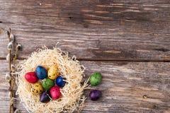 Βαμμένα αυγά ορτυκιών σε μια φωλιά στο ξύλινο υπόβαθρο Στοκ Φωτογραφίες