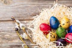 Βαμμένα αυγά ορτυκιών σε μια φωλιά στο ξύλινο υπόβαθρο Στοκ εικόνες με δικαίωμα ελεύθερης χρήσης