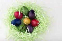 Βαμμένα αυγά ορτυκιών σε μια φωλιά Στοκ Φωτογραφία