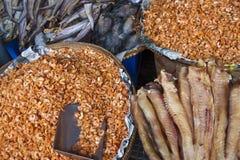 Βαμμένες ψάρια και γαρίδες Στοκ εικόνα με δικαίωμα ελεύθερης χρήσης