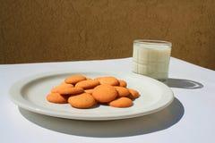 βανίλια γάλακτος γυαλιού μπισκότων Στοκ εικόνες με δικαίωμα ελεύθερης χρήσης