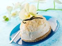 βανίλια πάγου κρέμας μπισκότων Στοκ εικόνες με δικαίωμα ελεύθερης χρήσης