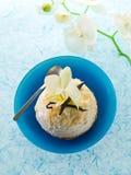 βανίλια πάγου κρέμας μπισκότων Στοκ εικόνα με δικαίωμα ελεύθερης χρήσης