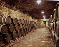 βαρέλια κρασιού Στοκ εικόνα με δικαίωμα ελεύθερης χρήσης