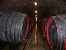 βαρέλια κρασιού Στοκ εικόνες με δικαίωμα ελεύθερης χρήσης