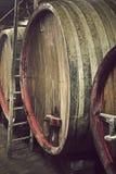 βαρέλια κρασιού Στοκ Εικόνες