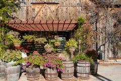 βαρέλια λουλουδιών Στοκ Εικόνες
