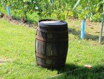 Βαρέλι κρασιού Στοκ Φωτογραφία