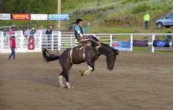 Βαρέλι που οδηγά cowgirl στοκ φωτογραφία με δικαίωμα ελεύθερης χρήσης