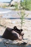 Βαρέλι στην άμμο Στοκ Εικόνα