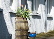 Βαρέλι στον τοίχο Στοκ φωτογραφία με δικαίωμα ελεύθερης χρήσης
