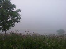 Βαριά ομίχλη πρωινού Στοκ Φωτογραφία