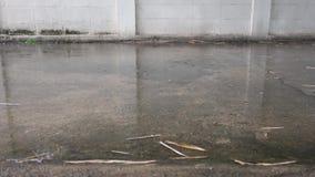 Βαριά πτώση σταγόνων βροχής Πτώσεις βροχής στο τσιμέντο πατωμάτων Άσπρο υπόβαθρο τοίχων απόθεμα βίντεο