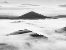 Βαριά υδρονέφωση στο τοπίο Θαυμάσια κρεμώδης ομίχλη φθινοπώρου Στοκ Εικόνες
