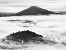 Βαριά υδρονέφωση στο τοπίο Θαυμάσια κρεμώδης ομίχλη φθινοπώρου Στοκ φωτογραφία με δικαίωμα ελεύθερης χρήσης