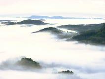 Βαριά υδρονέφωση στο τοπίο Θαυμάσια κρεμώδης ομίχλη φθινοπώρου Στοκ εικόνα με δικαίωμα ελεύθερης χρήσης