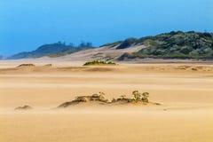 Βαριά φυσώντας άμμος αέρα στην παραλία ενάντια στον παράκτιο ορίζοντα Στοκ Φωτογραφίες