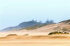 Βαριά φυσώντας άμμος αέρα στην παραλία ενάντια στον παράκτιο ορίζοντα Στοκ Εικόνα