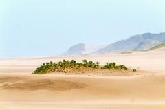 Βαριά φυσώντας άμμος αέρα στην παραλία ενάντια στον παράκτιο ορίζοντα Στοκ φωτογραφία με δικαίωμα ελεύθερης χρήσης