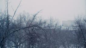 Βαριές χιονοπτώσεις στην πόλη Πυροβολισμός από το παράθυρο του σπιτιού απόθεμα βίντεο