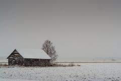 Βαριές χιονοπτώσεις στους τομείς Στοκ Εικόνες