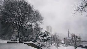 Βαριοί αέρας και ισχυρή χιονόπτωση στο πάρκο πόλεων απόθεμα βίντεο