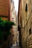 Βαρκελώνη, Ισπανία στις 6 Σεπτεμβρίου 2018: Μια αλέα κοντά Catedral de Λα Santa Cruz Υ Santa Eulalia στοκ εικόνα