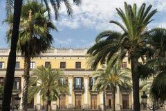 Βαρκελώνη (Ισπανία): Βασιλικό τετράγωνο Στοκ Εικόνα