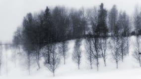 Βαρύς αέρας και χιονοπτώσεις απόθεμα βίντεο